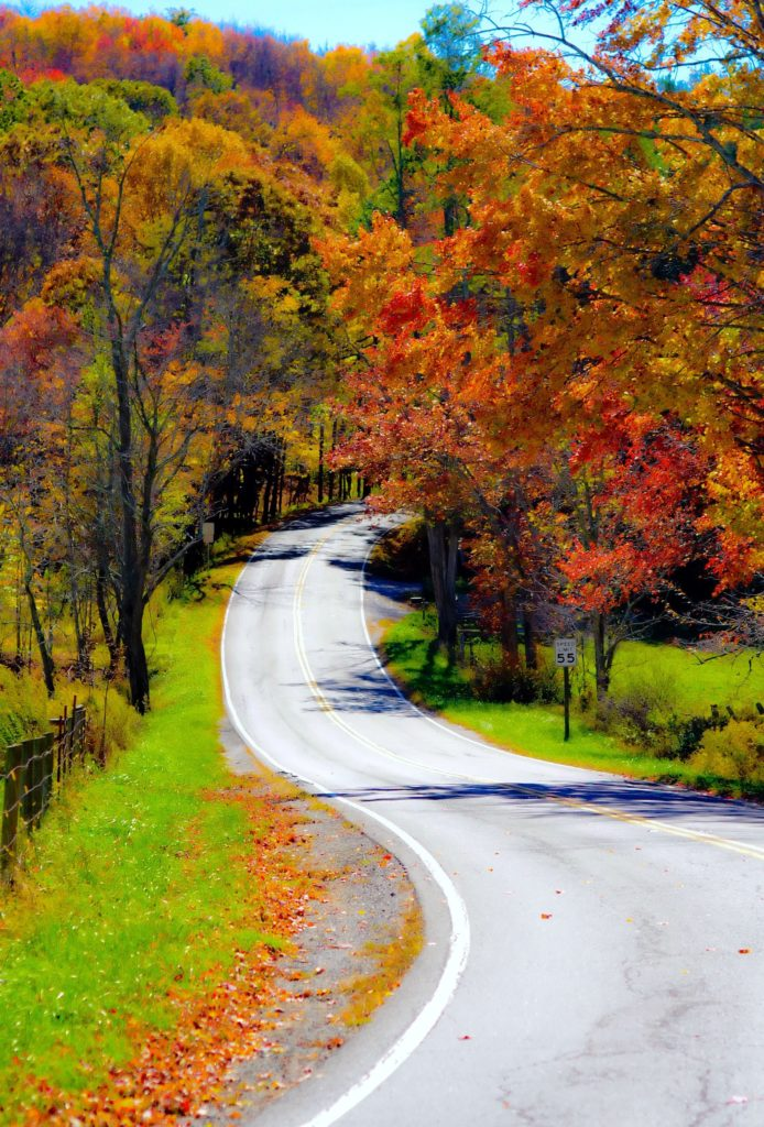 Mountain road in Central Virginia